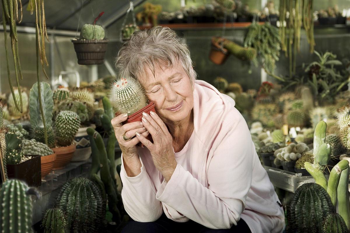 Portraitfoto einer Frau. die einen Kaktus an ihr Gesicht hält