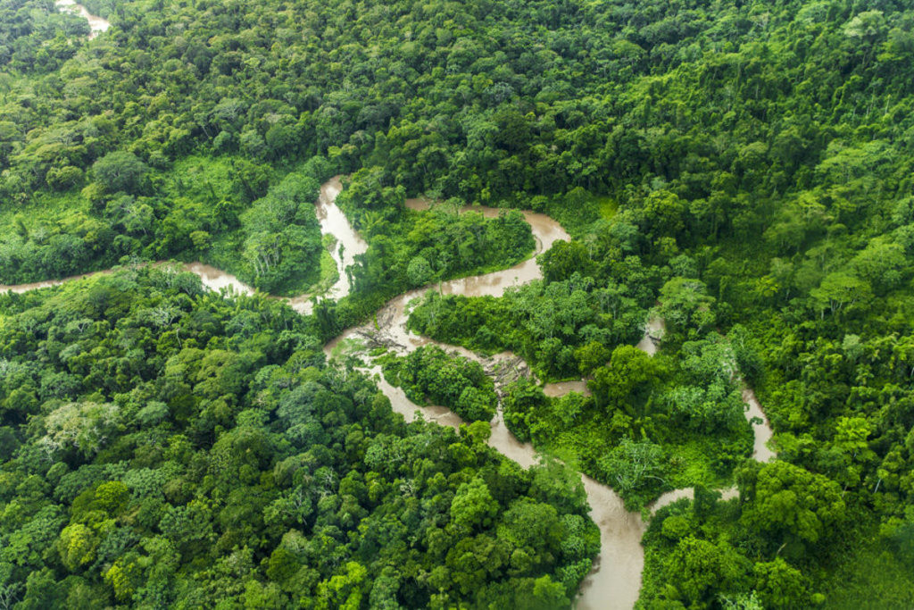 Luftaufnahme vom Amazonas in Ecuador | Foto: Hanna Witte