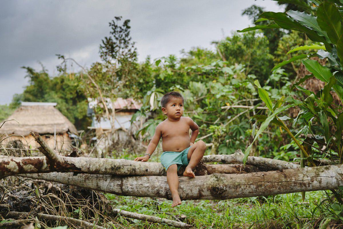 indigener Junge auf einem Baumstamm im Regenwald in Ecuador | Foto von NGO Fotografin Hanna Witte