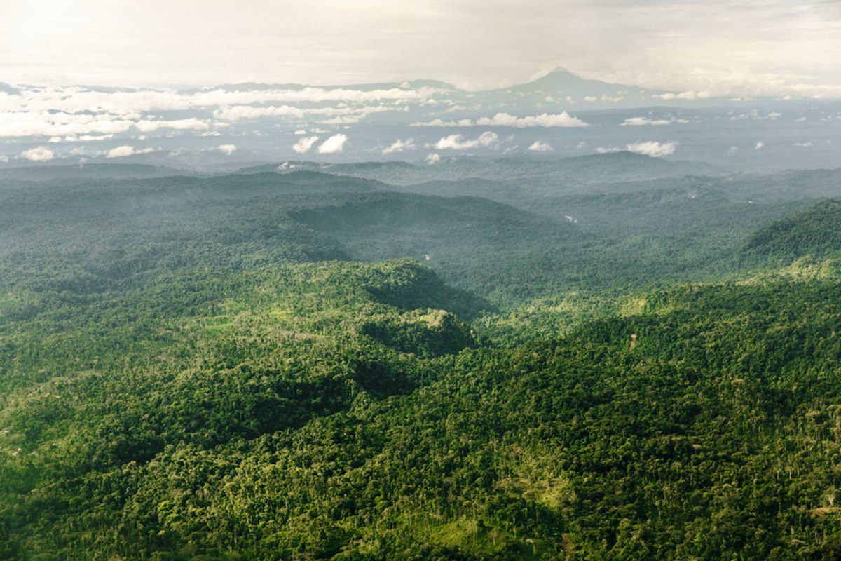 Regenwald am Amazonas in Ecuador | Foto von NGO Fotografin Hanna Witte