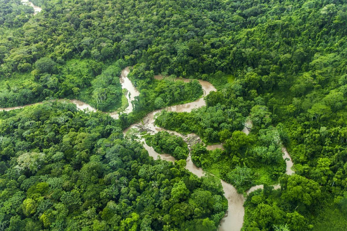 Luftaufnahme vom Amazonas im Regenwald von Ecuador | Foto von NGO Fotografin Hanna Witte