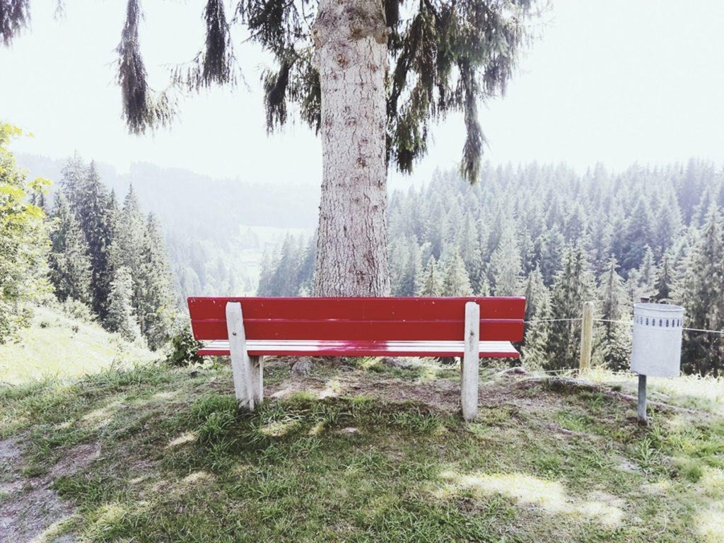 Foto einer roten Parkbank in der Natur | Foto: Hanna Witte