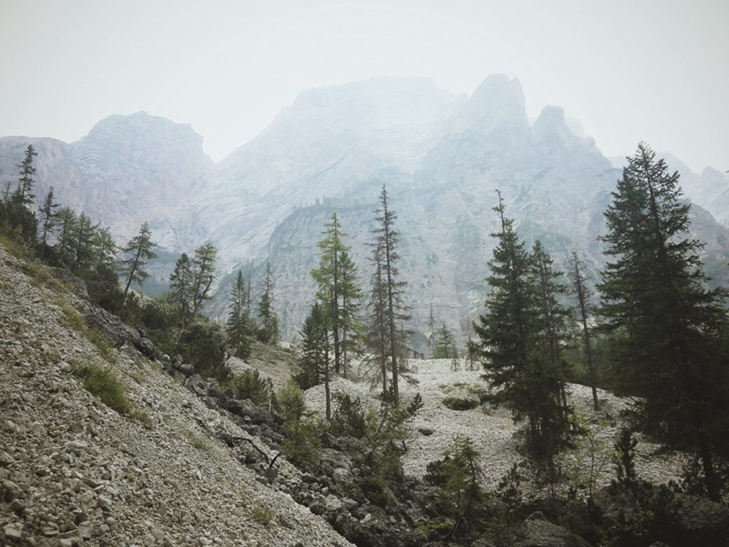 Foto einer Berglandschaft mit Bäumen | Foto: Hanna Witte