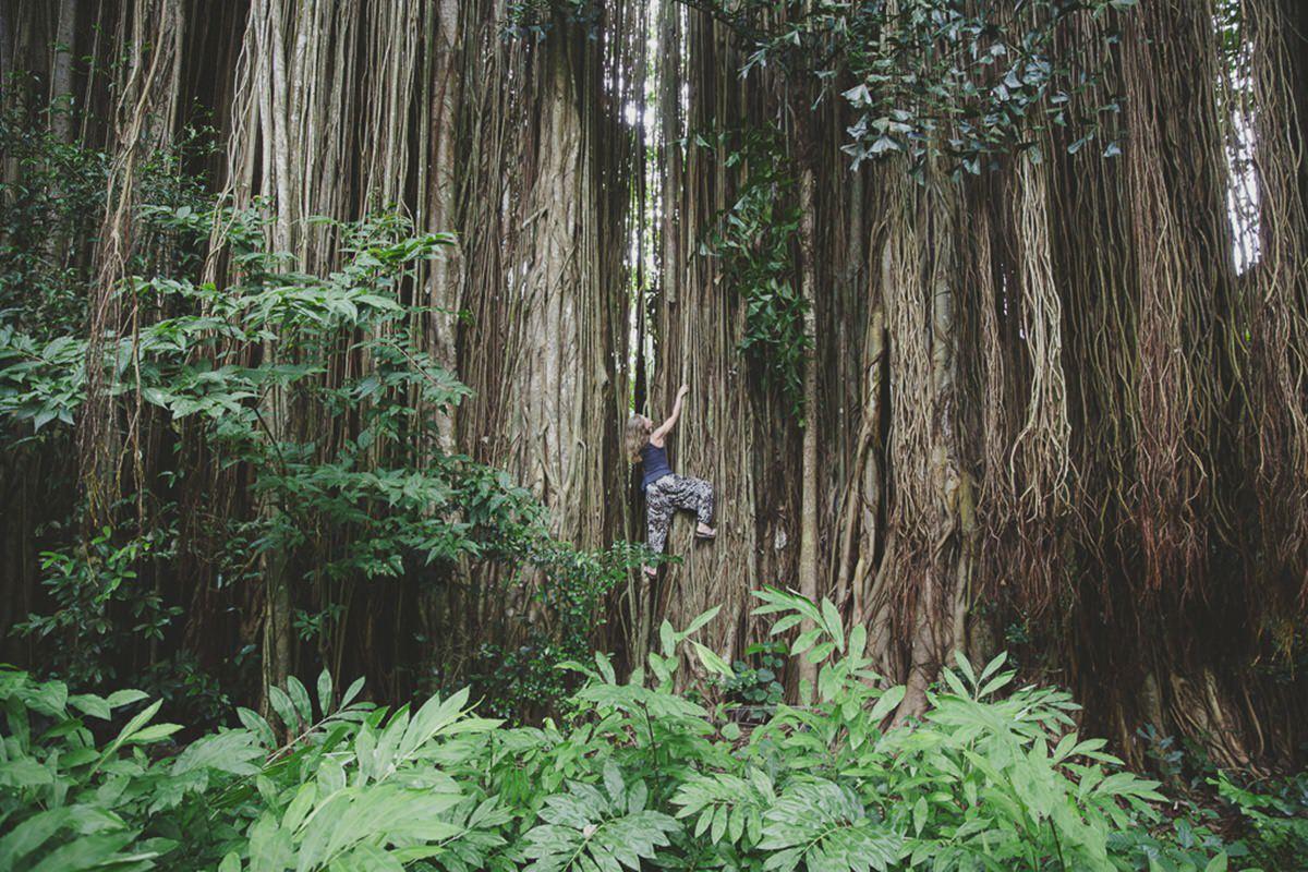 Foto von einer Frau, die im indischen Dschungel einen hohen Baum hochklettert | Foto: Hanna Witte