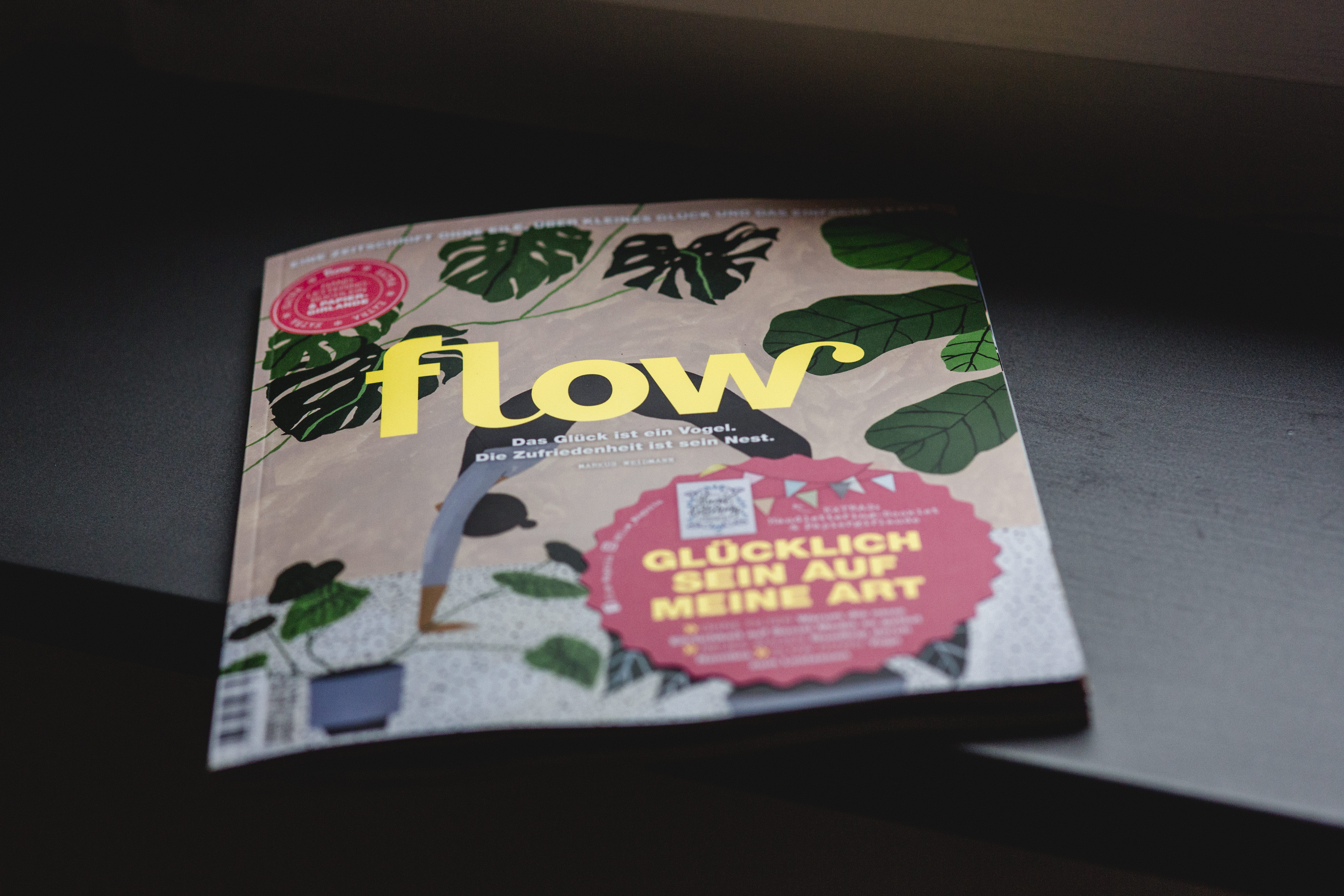 Flow Magazin Heft 40