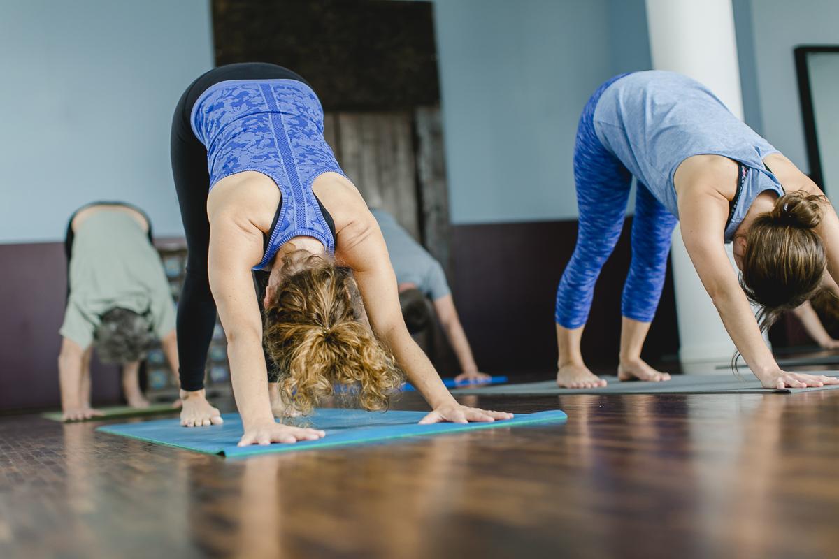 Impressionen von einem Yoga Kurs in der Ashtanga Yoga Schule Ginger Up in Köln