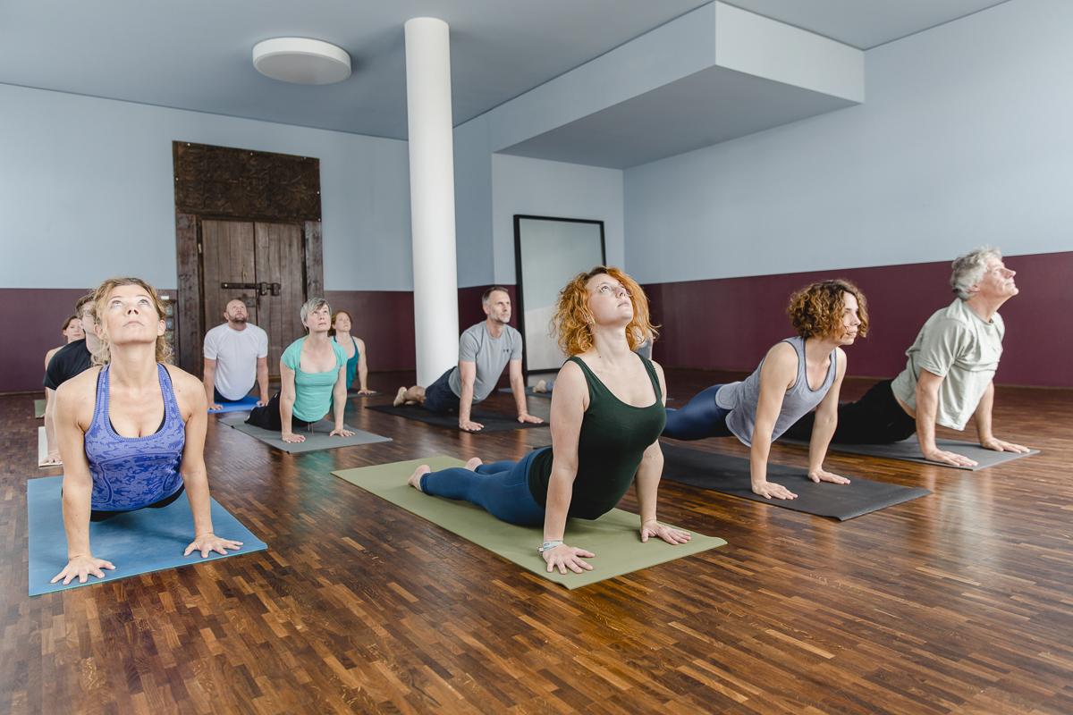 Kursteilnehmer bei einer Yoga Übung im Yoga Studio Ginger Up in Köln