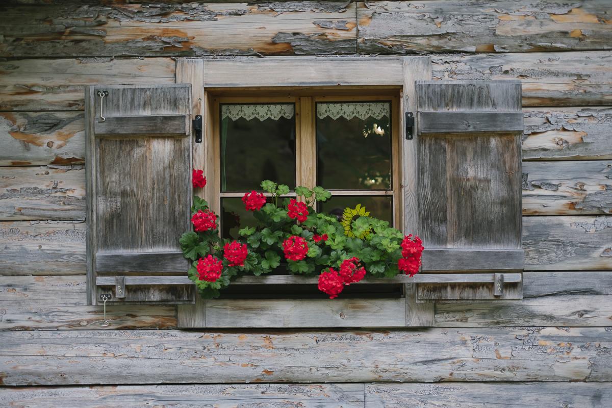 Fenster mit Blumenkasten und Fensterläden von einem Holzhaus in den Alpen