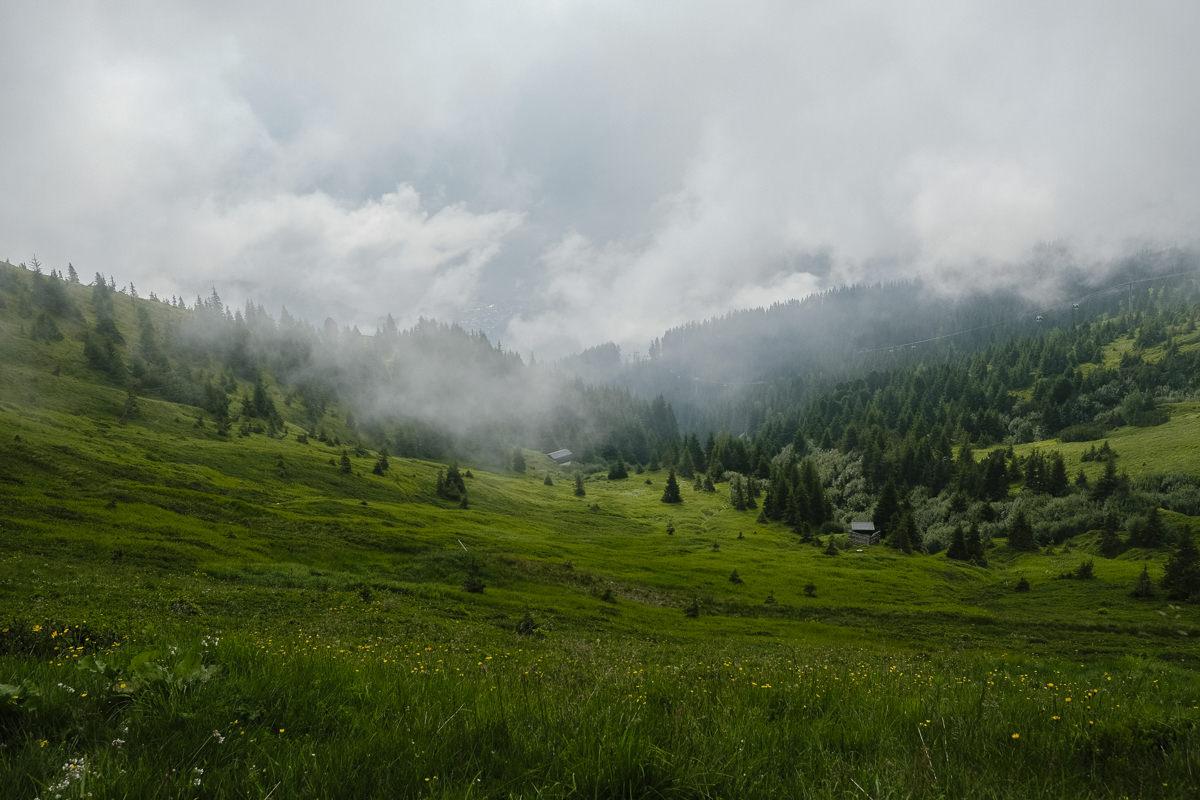 grüne Wiese in den Alpen mit Wolken und Nebel