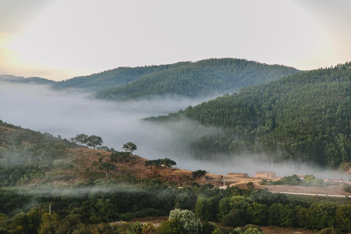 Morgennebel über der Landschaft Portugals