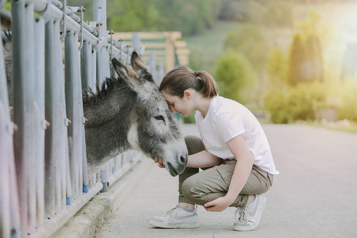 im Reitstall des Kinderhotels Ottonenhof streichelt ein Mädchen einen Esel | Foto: Hanna Witte