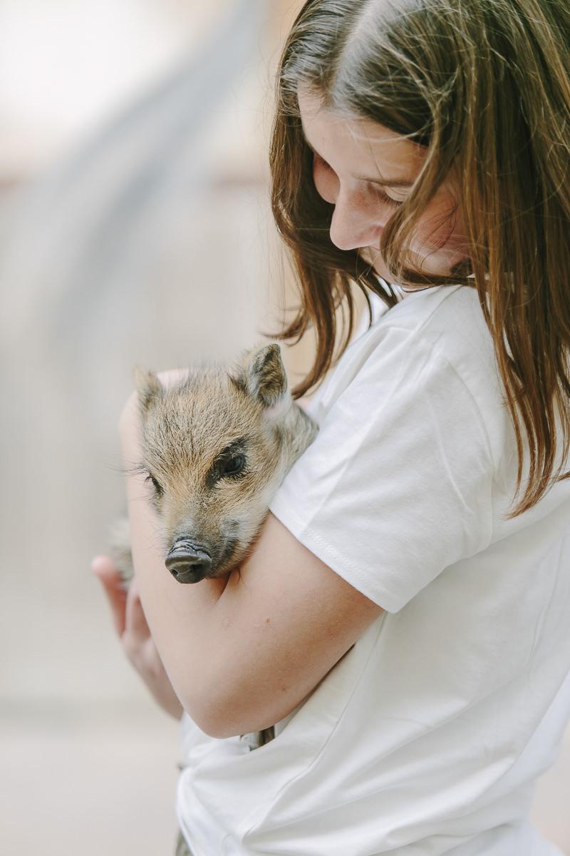 auf dem Ottonenhof im Sauerland hält ein Mädchen einen kleinen Frischling im Arm | Foto: Hanna Witte