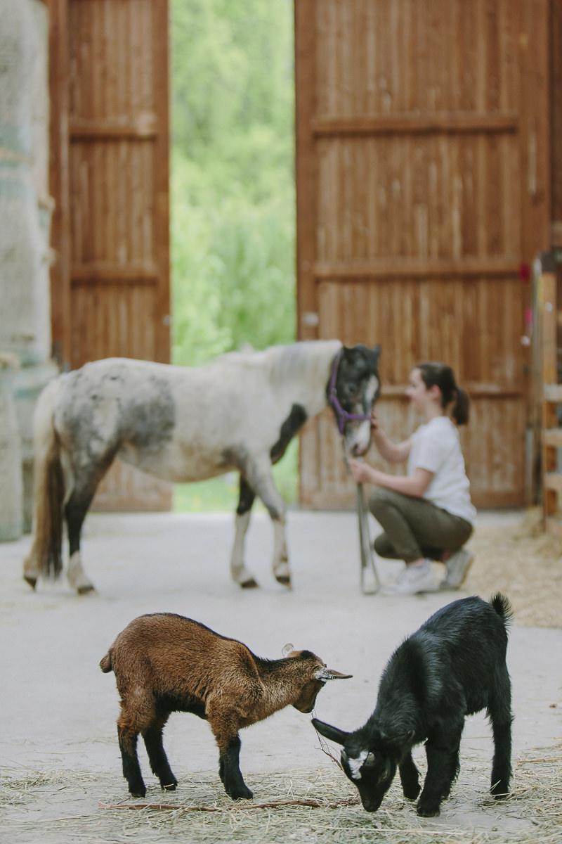 Kinderhotel Foto von Kindern und Tieren im Reitstall des Ottonenhof | Foto: Hanna Witte