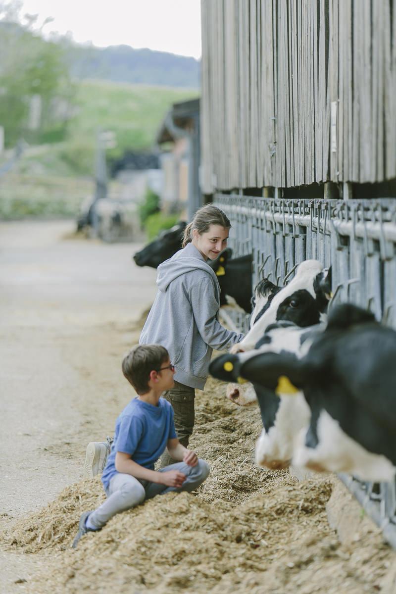 Kinder streicheln Kühe auf dem Bauernhof des Ottonenhofs im Sauerland | Foto: Hanna Witte