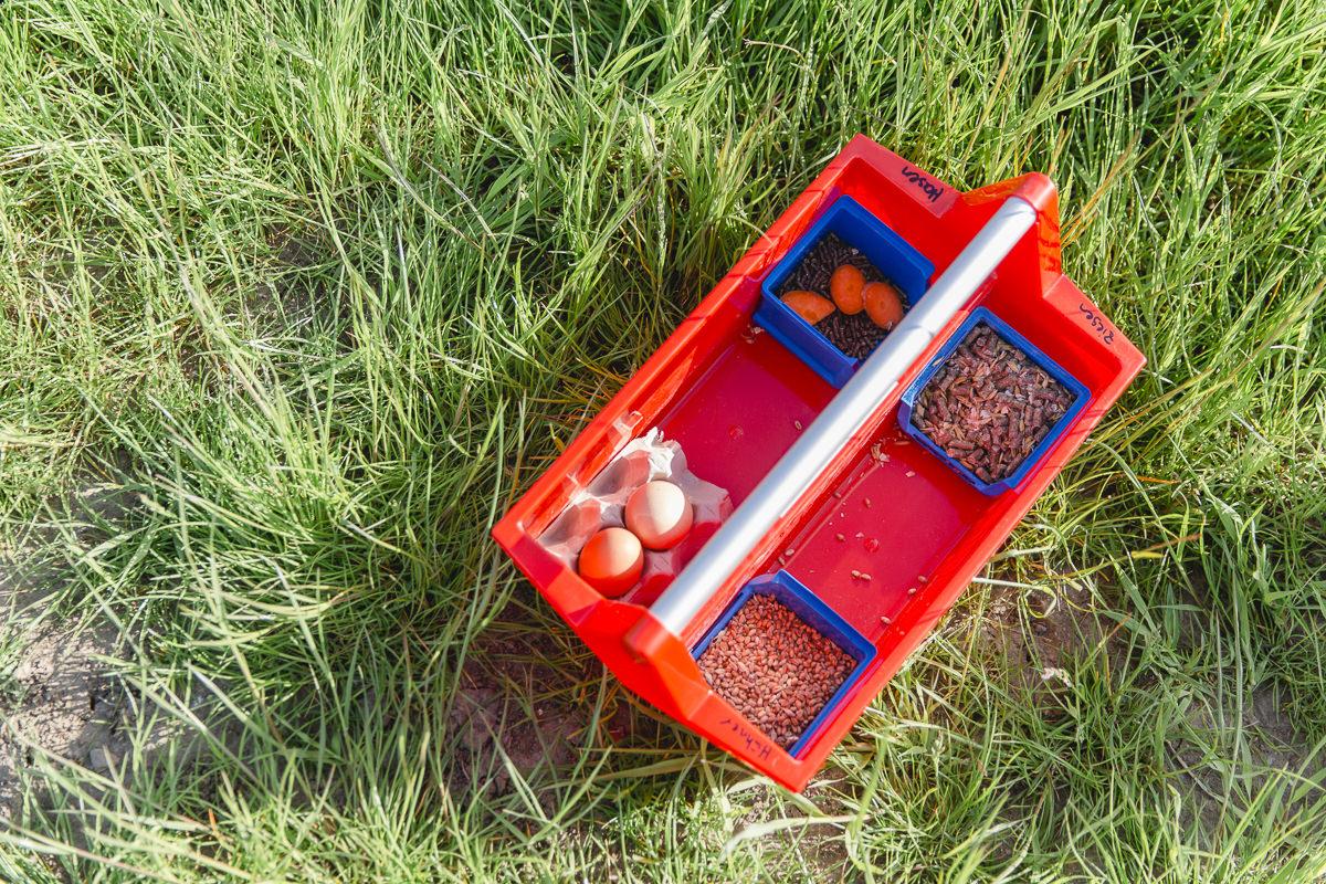 Foto von einer roten Kiste mit Hühnereiern und Hühnerfutter auf dem Bauernhof des Kinderhotels Bauer Martin | Foto: Hanna Witte
