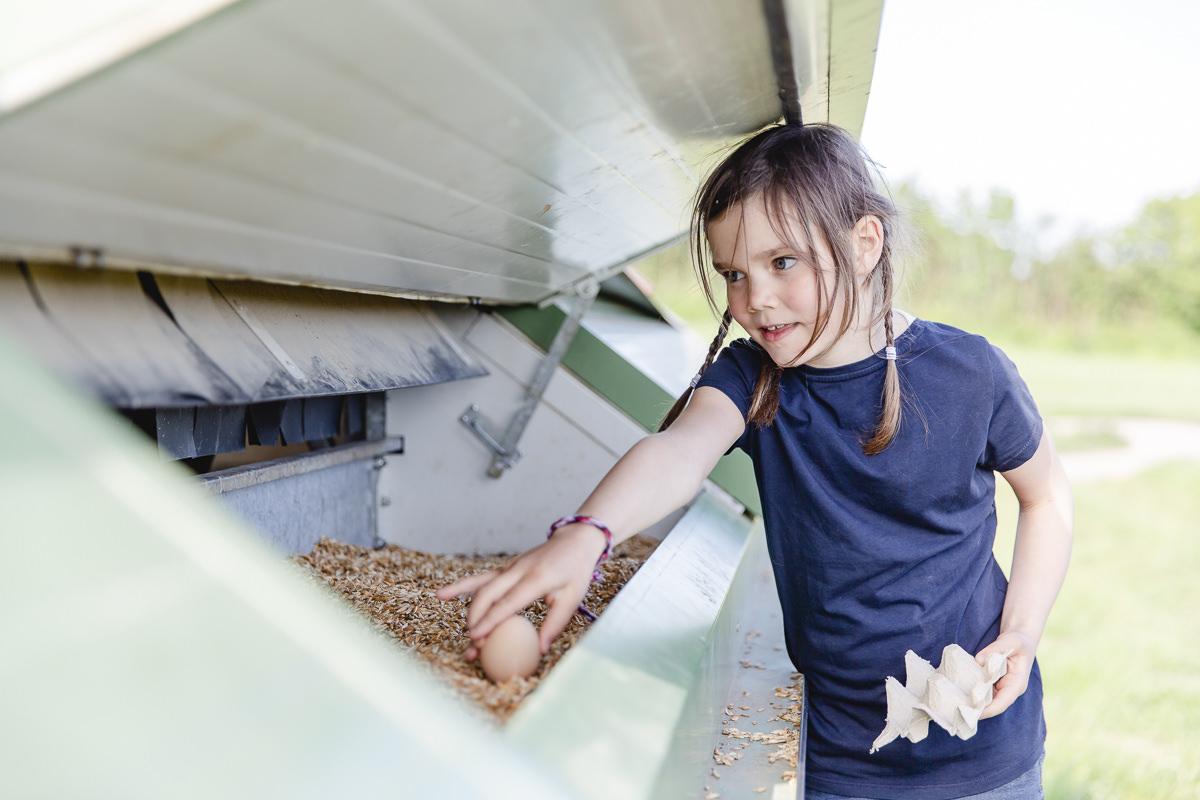 Foto von einem Kind beim Eierholen auf dem Bauernhof des Familienhotels Bauer Martin | Foto: Hanna Witte