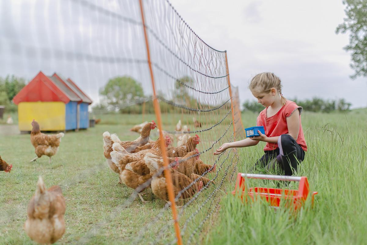 Foto von einem Kind beim Hühnerfüttern im Familienhotel Bauer Martin | Foto: Hanna Witte