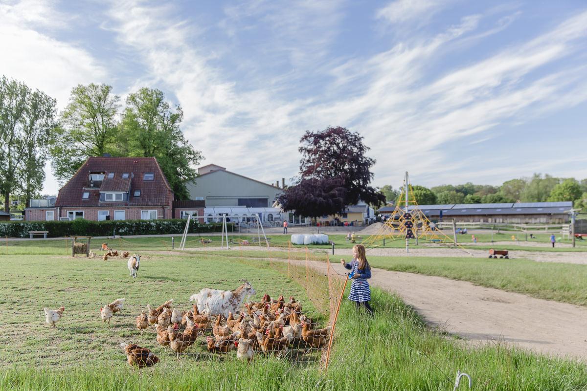 Fotos vom Familienurlaub auf dem Bauernhof | Foto: Hanna Witte