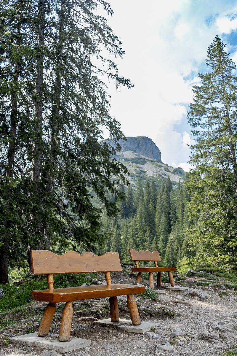 Wanderweg mit Bänken und toller Aussicht im Allgäu | Foto: Hanna Witte