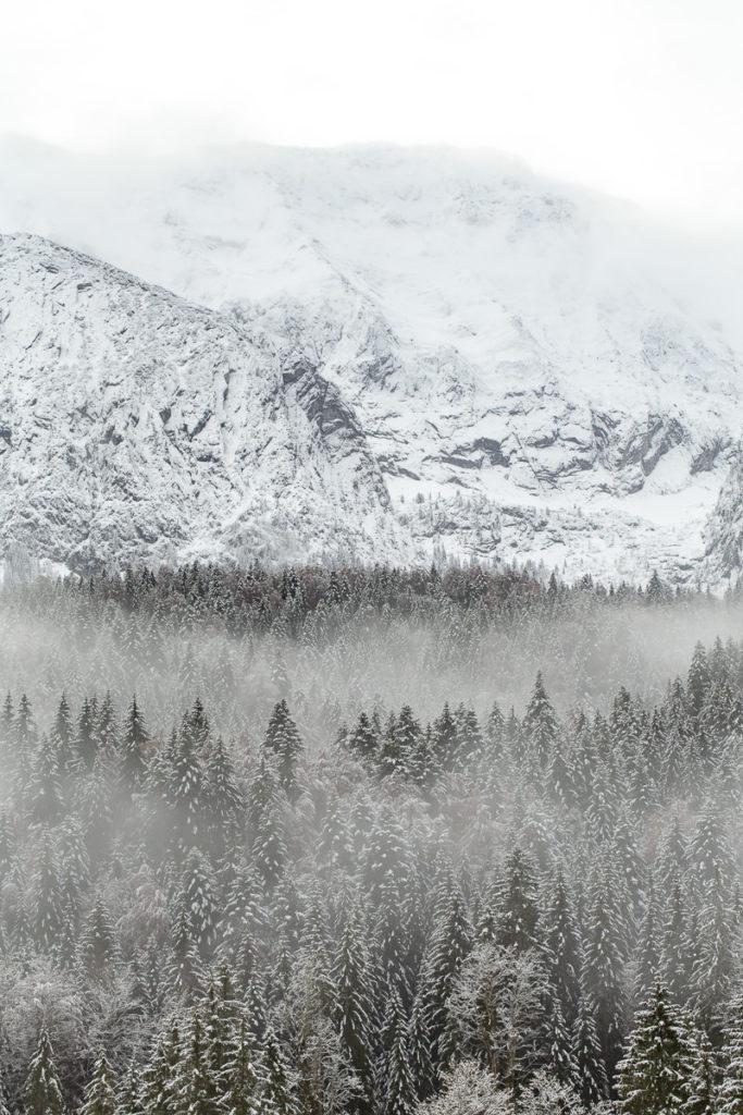 Landschaftsaufnahme von schneebedeckten Gipfeln und Bäumen in den Bayerische Alpen | Foto: Hanna Witte