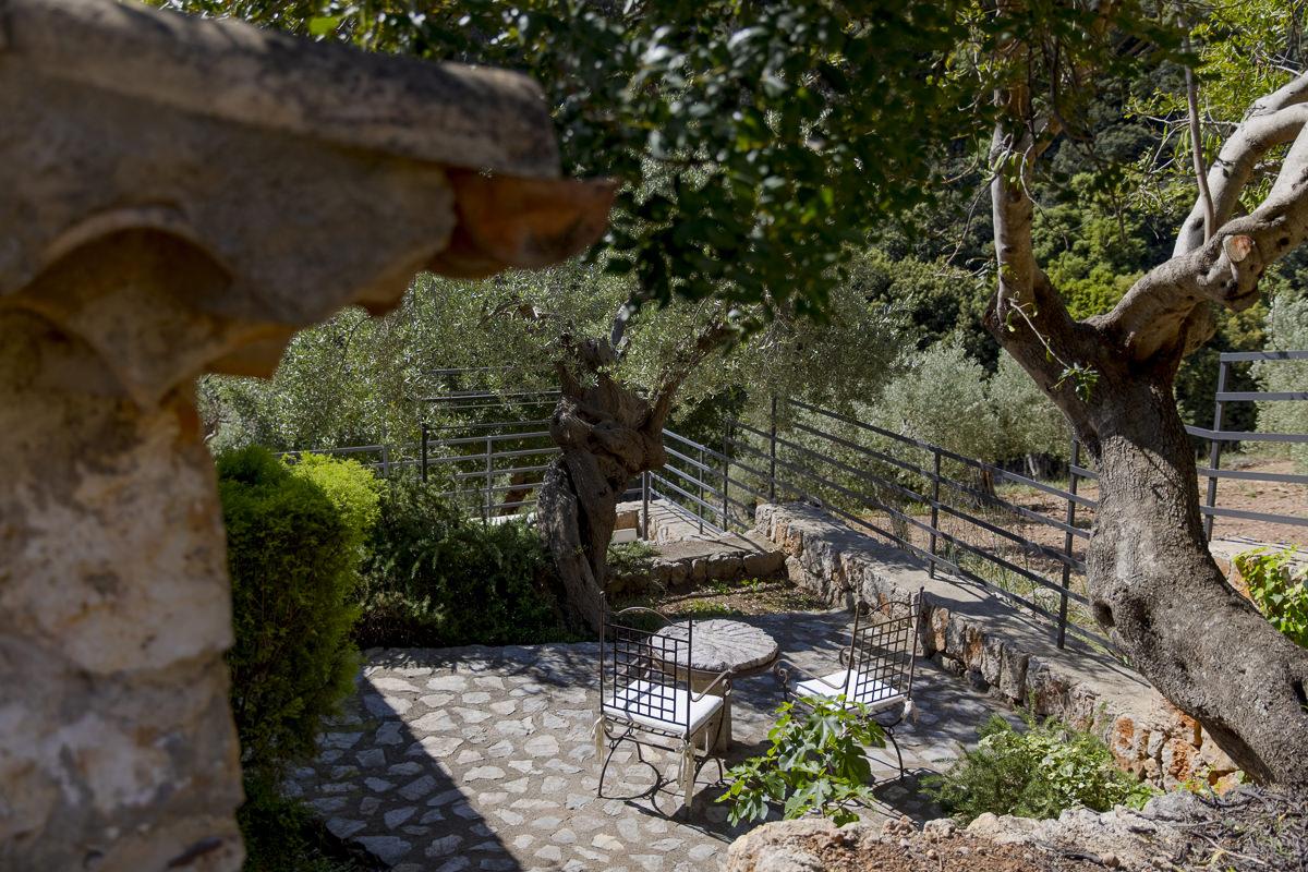 Hotelfoto Außenbereich der Albellons Finca auf Mallorca | Foto: Hanna Witte