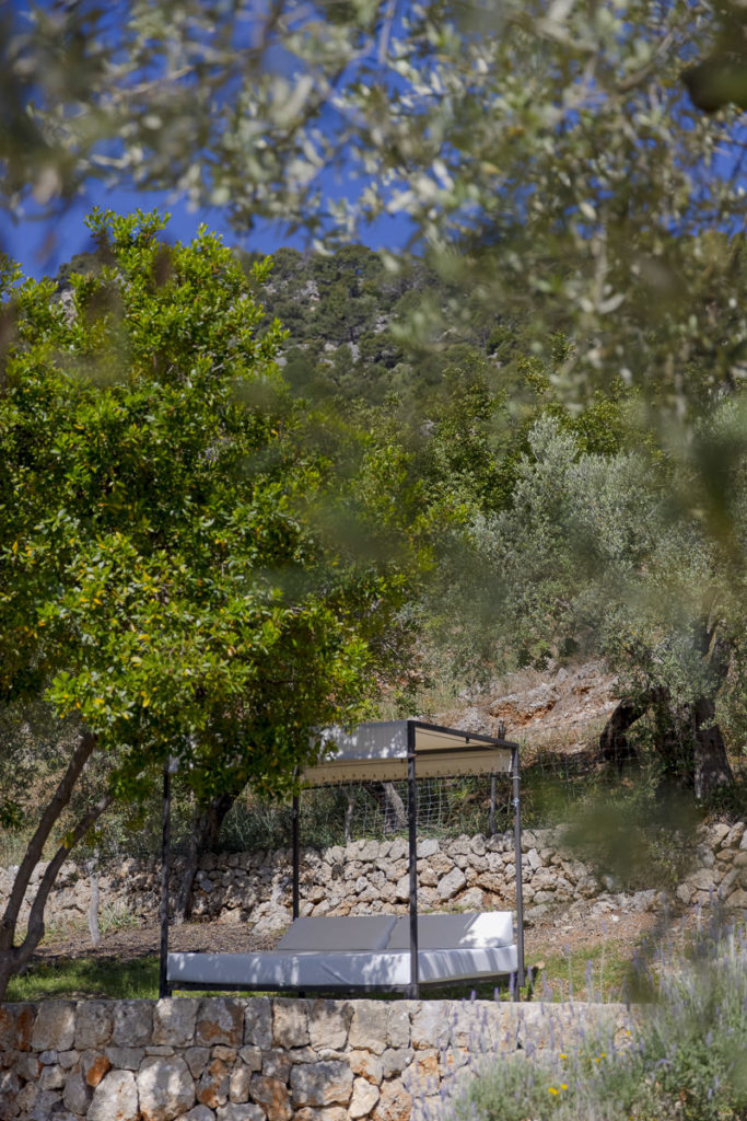 Albellons Finca inmitten wilder Natur auf Mallorca | Foto: Hanna Witte