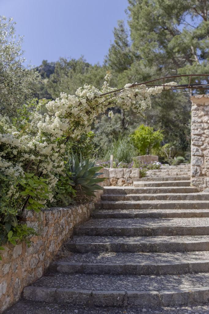 Steintreppe umgeben von Blumen und Pflanzen im Außenbereich einer Finca auf Mallorca | Foto: Hanna Witte