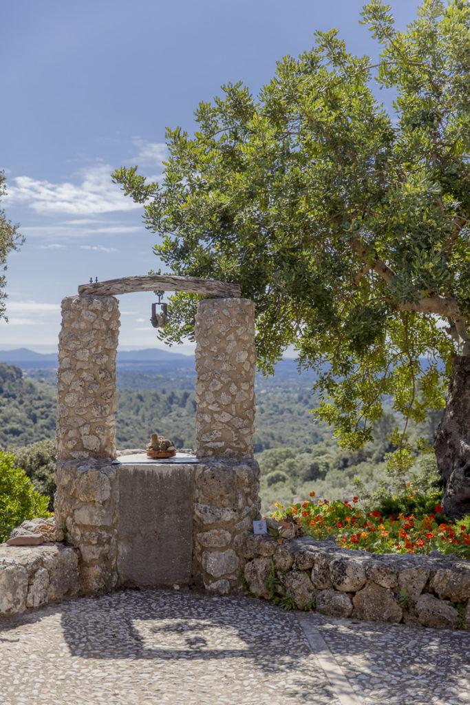 Natur rund um die Finca Albellons auf Mallorca | Foto: Hanna Witte