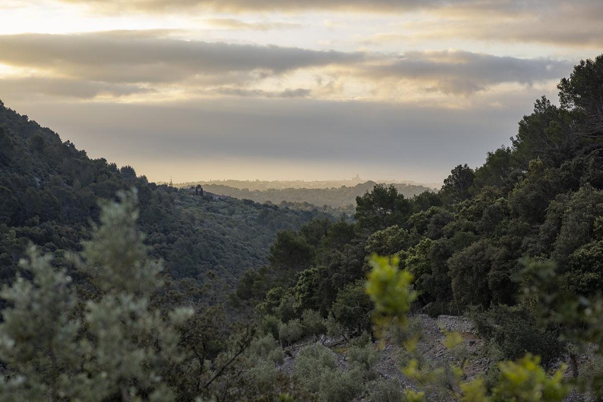 Landschaftsfoto des Trsmuntana Gebirges auf Mallorca | Foto: Hanna Witte