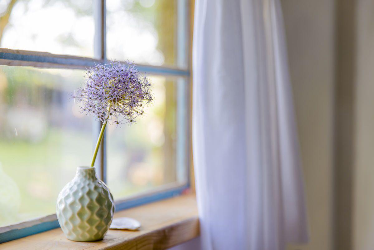 kleine Vase am Fenster eines Ulliwood Zirkuswagen | Foto: Hanna Witte