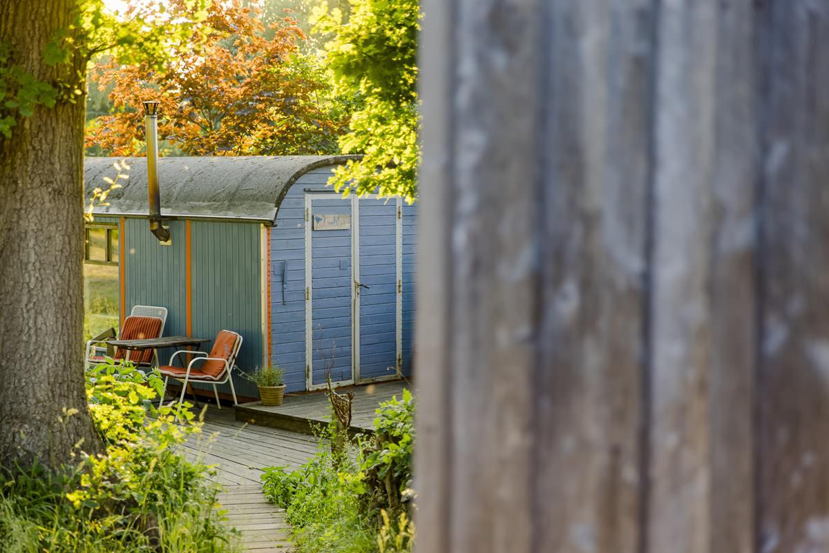 blauer Zirkuswagen umgeben von Natur | Foto: Hanna Witte