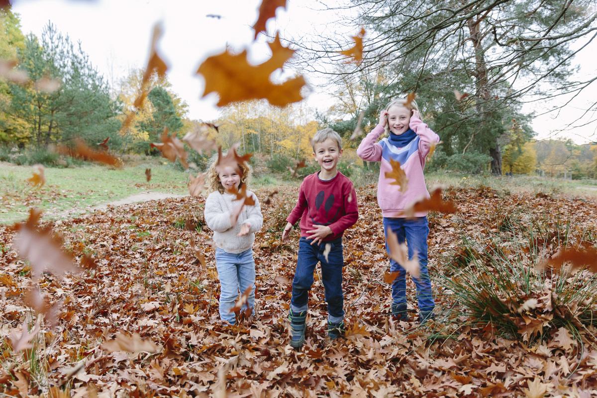 Kinder toben im Herbstlaub   Foto: Hanna Witte