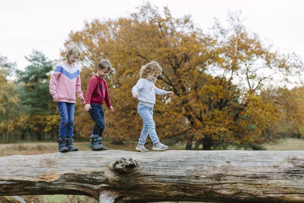 Kinder balancieren über einen Baumstamm im Park   Foto: Hanna Witte